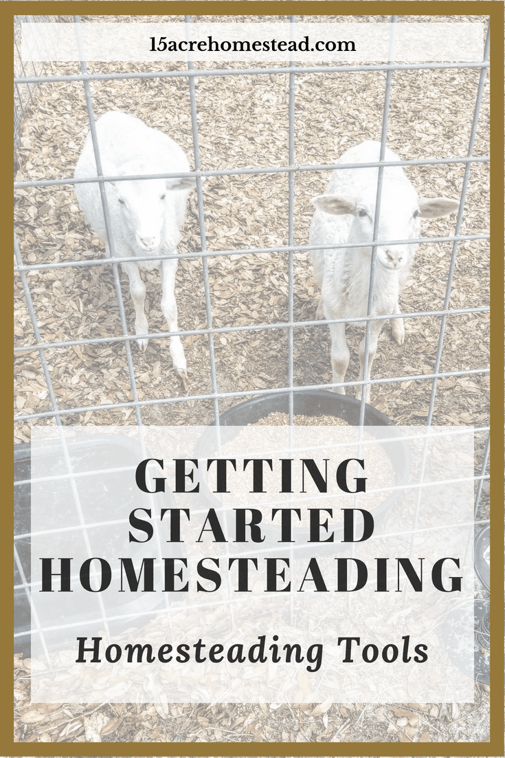 Part 2 of the Getting Started Homesteading Series. Learn what homesteading tools are important to get started.