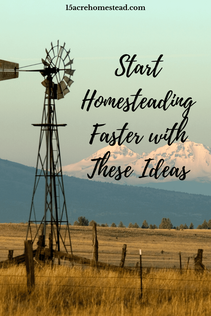 Check out these ideas to allow you to start your homesteading successfully yet faster than you may think.