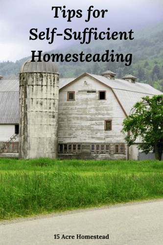 Following some simple tricks for self-sufficient homesteading can make your journey much more successful and much less stressful!