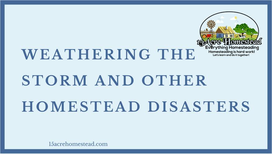 homestead disasters
