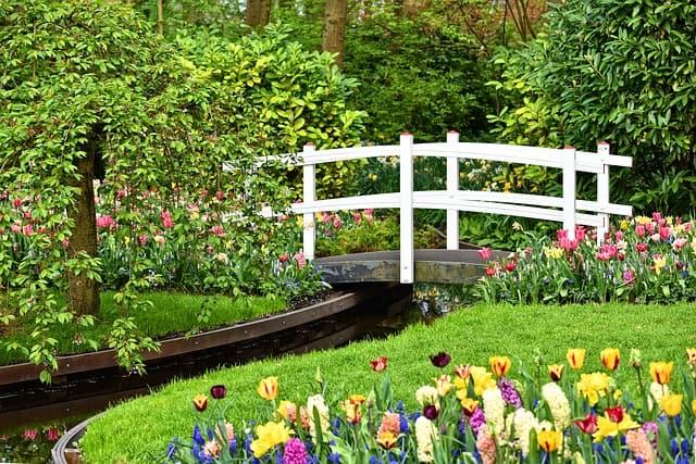 garden interest