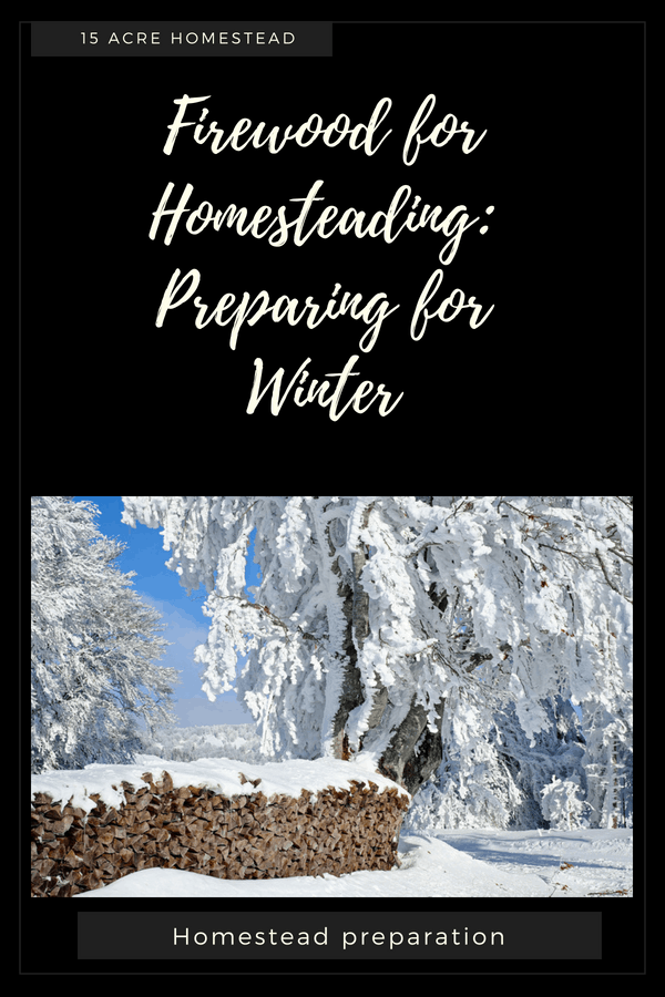 An experienced homesteader can survive every winter simply burning firewood. This guest post from Toolazine will teach you how.