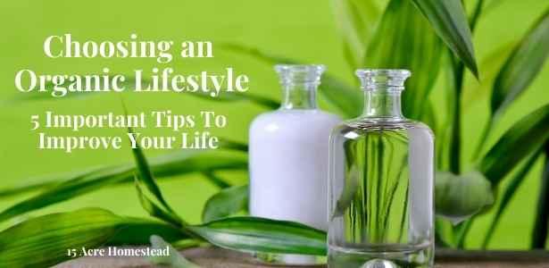 organic lifestyle featured image
