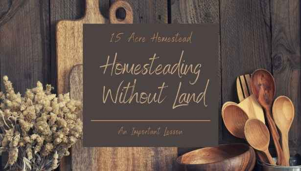 homesteading without land featured image