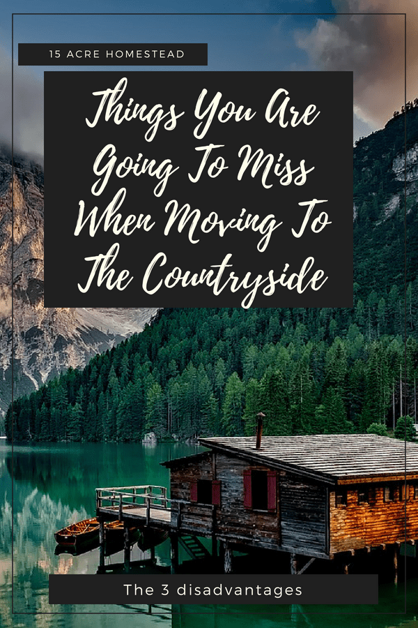 Moving to the countryside can be rewarding, but there are a few things you may miss.