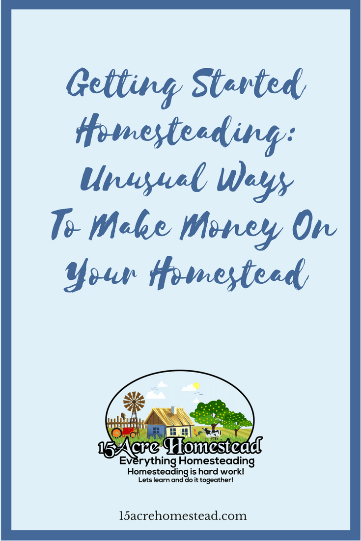 When you are getting started homesteading there are many ways to make money on your homestead.