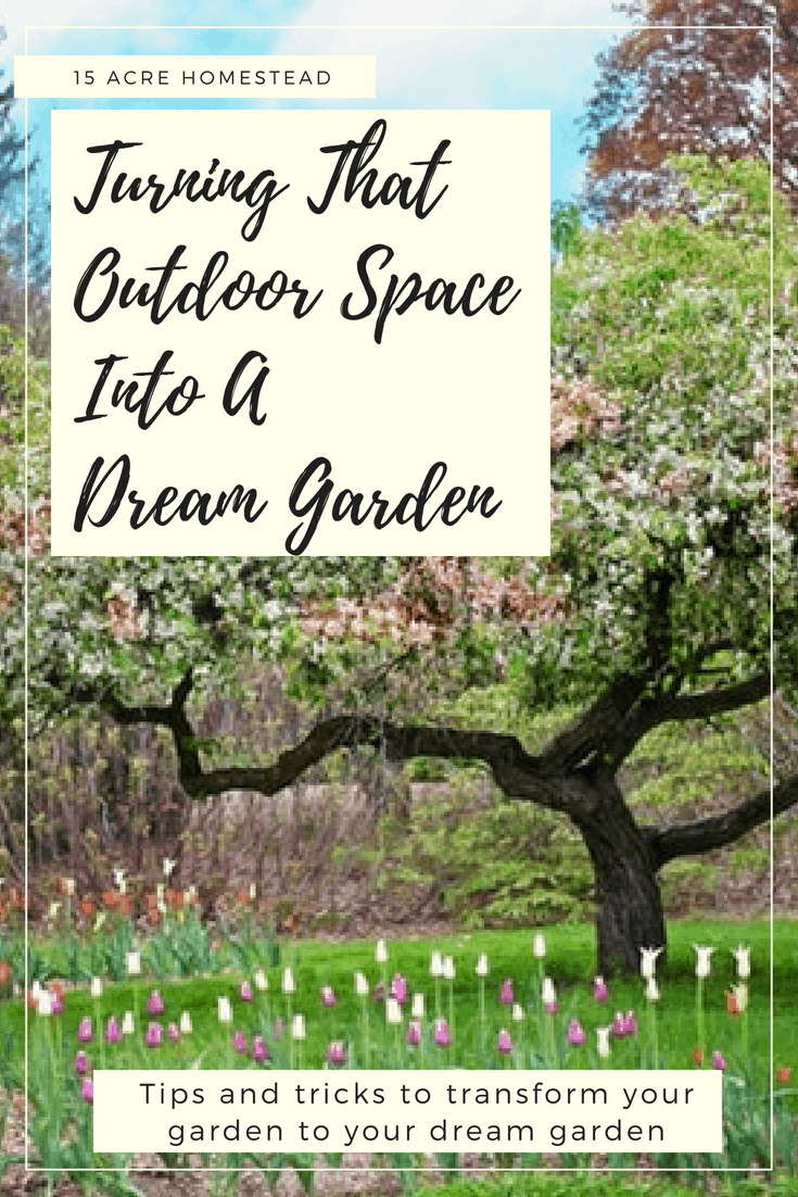 You can turn any outdoor space into a dream garden with these simple tips and tricks.