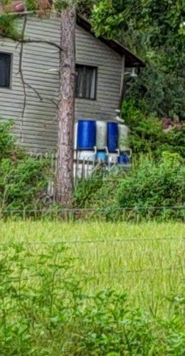 improving homesteading skills