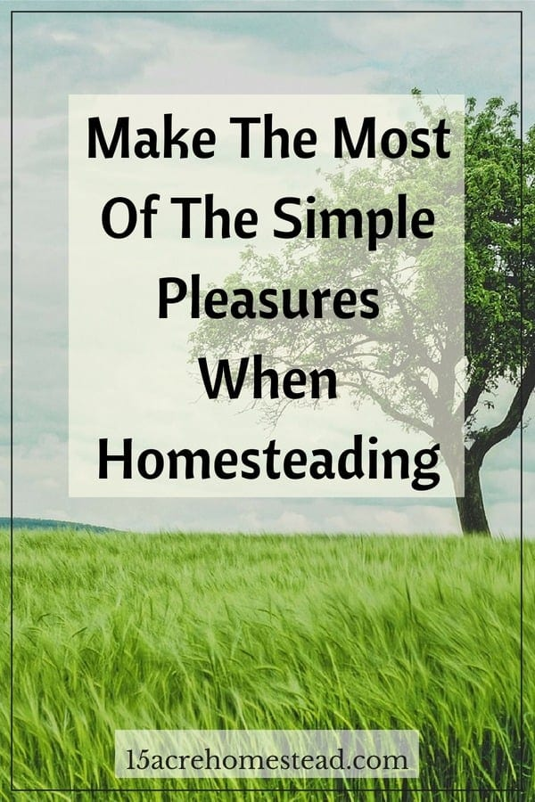 Homesteading has the potential to be one of the most fulfilling things that you ever do with your life.