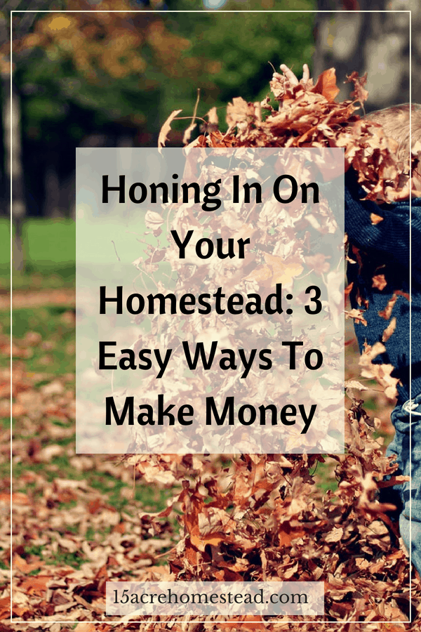 Learn 3 easy ways to make money on your homestead.