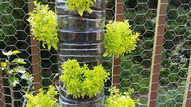 How To Improve Your Yard With Decorative Garden Ideas - 15 Acre ...