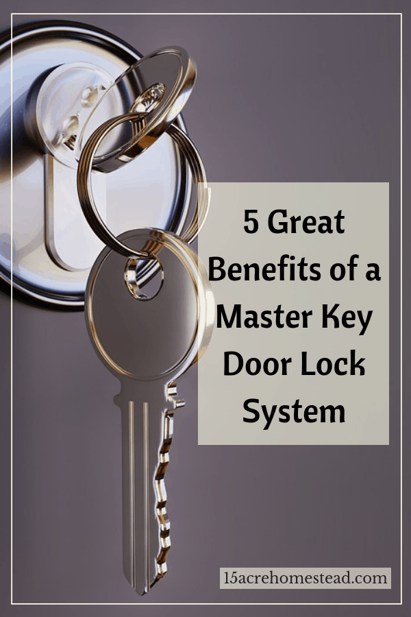 A Master key door lock system is great for larger homes and of course, business offices.
