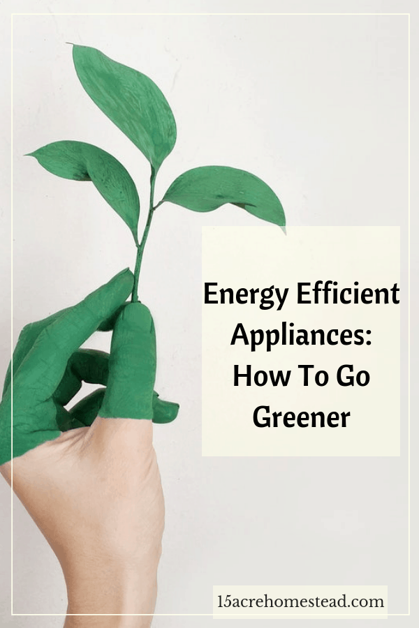 Appliance account for 30% of total electricity consumption in the home. Learn how to go greener!