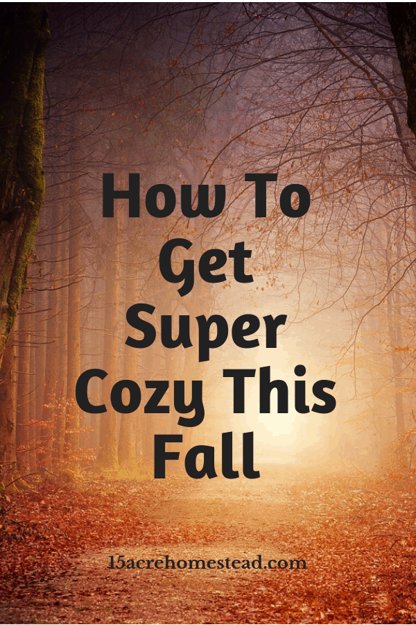 Fall is here so why not try some new ways to get cozy this year.