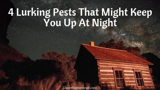 lurking pests