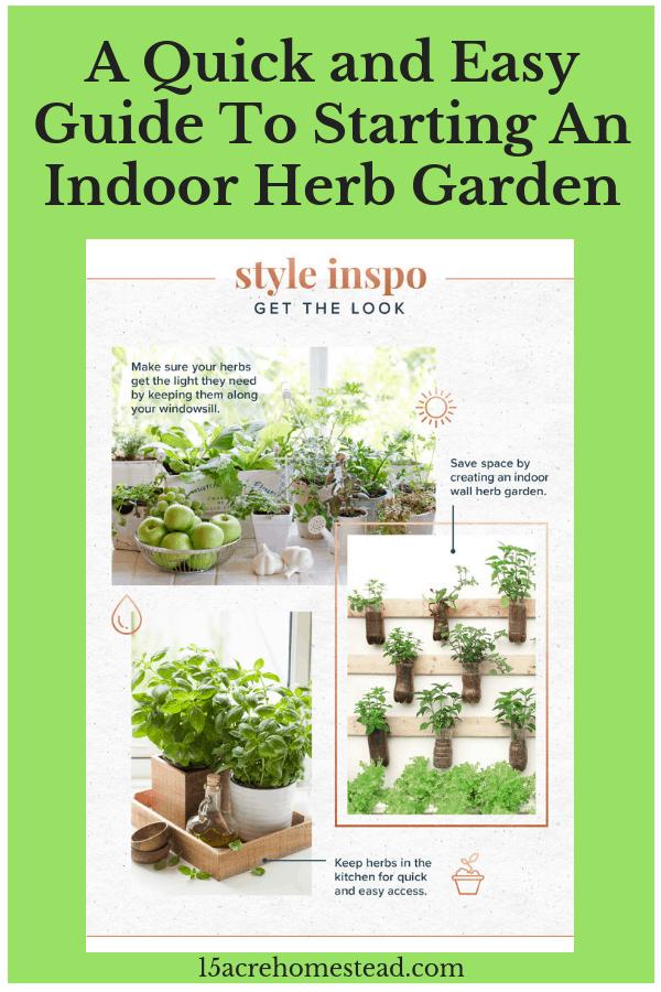 An indoor herb garden is a wonderful way to enjoy fresh herbs all year.