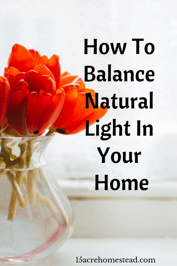 Increasing numbers of people are starting to realize the importance of natural light within their properties.