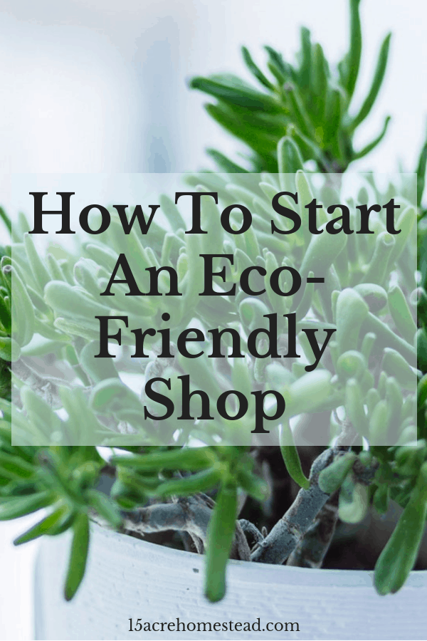 Opening an eco-friendly shop is a great way to show your awareness of protecting the environment.