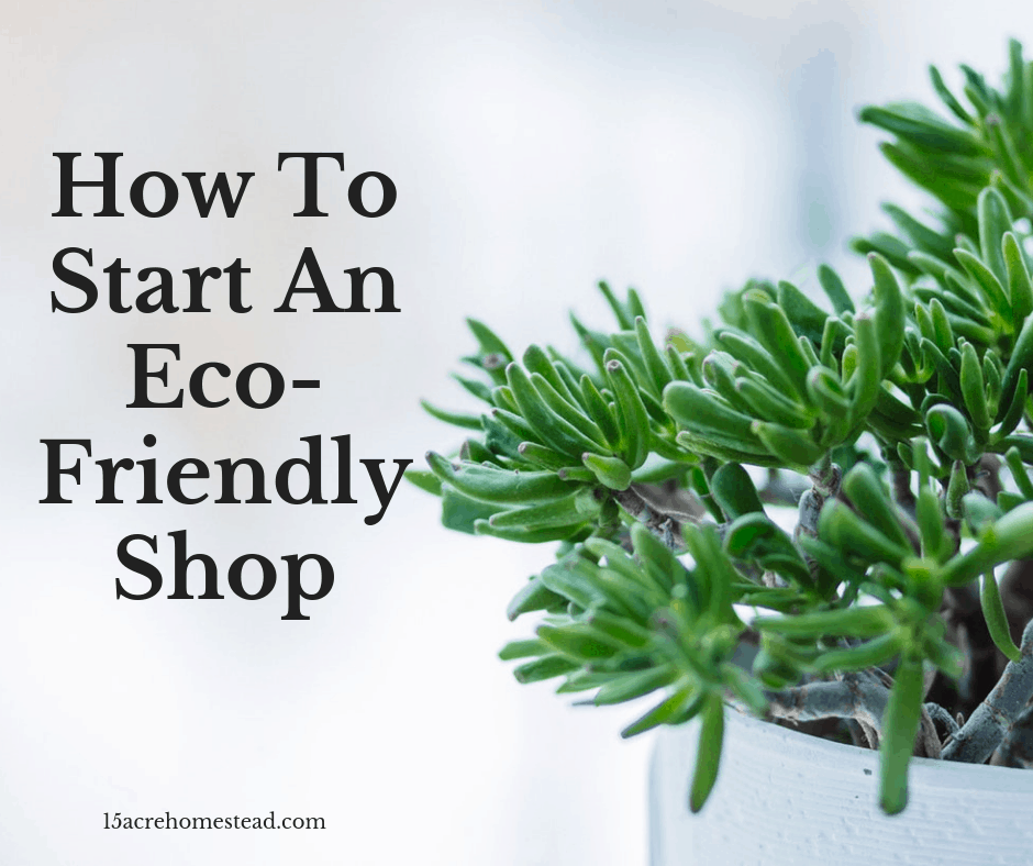 How To Start An Eco-Friendly Shop