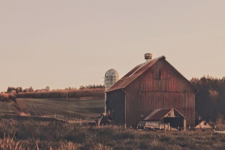 first homestead