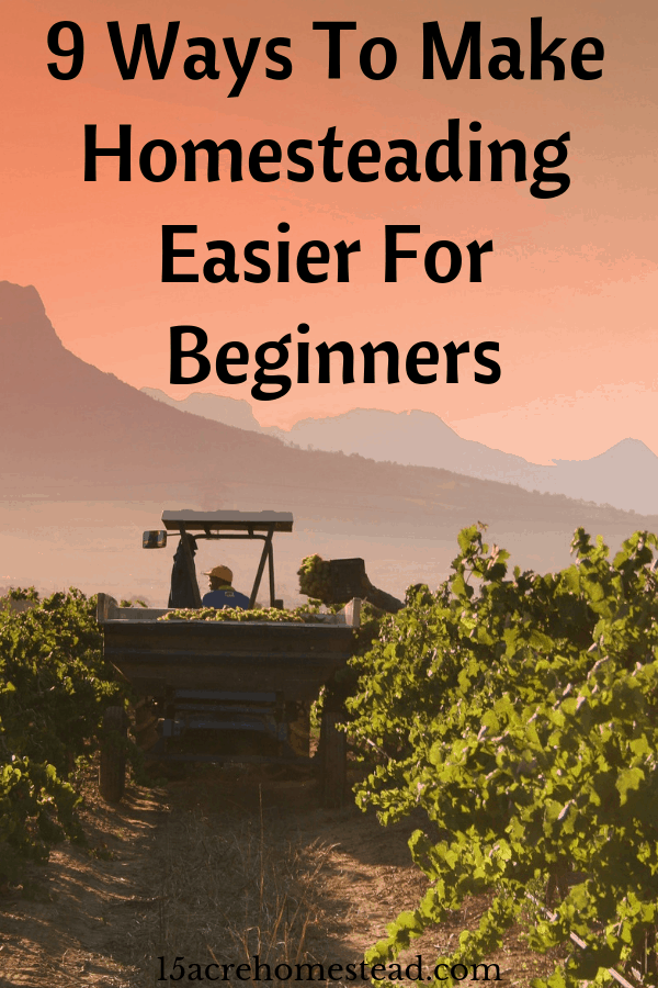 Homesteading can also be difficult to switch to if you're fairly new. This is why it's important to ease yourself into the lifestyle and slowly make changes that you can adapt to.