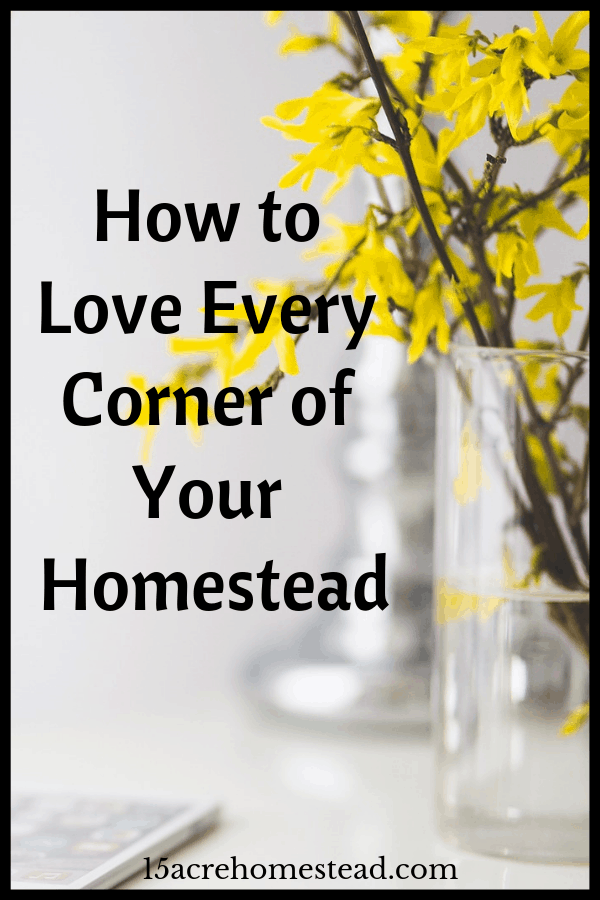If you have been wondering how you can make some positive changes to your humble homestead then now is your chance to take all of this inspiration into account.