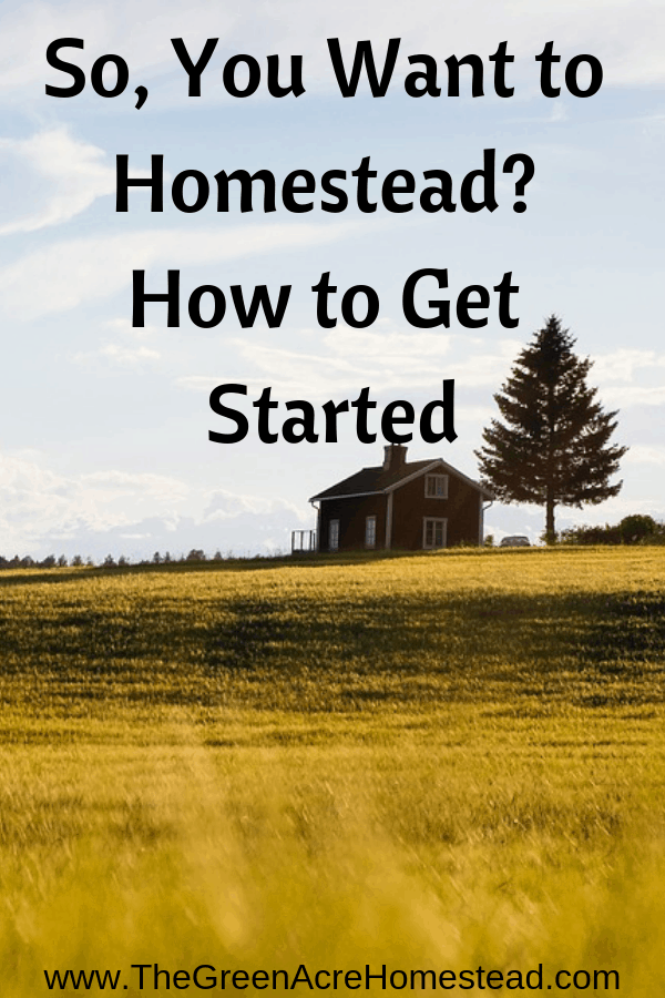 Read the story of how The Green Acre Homestead began and learn some great tips for getting started on your own homestead.