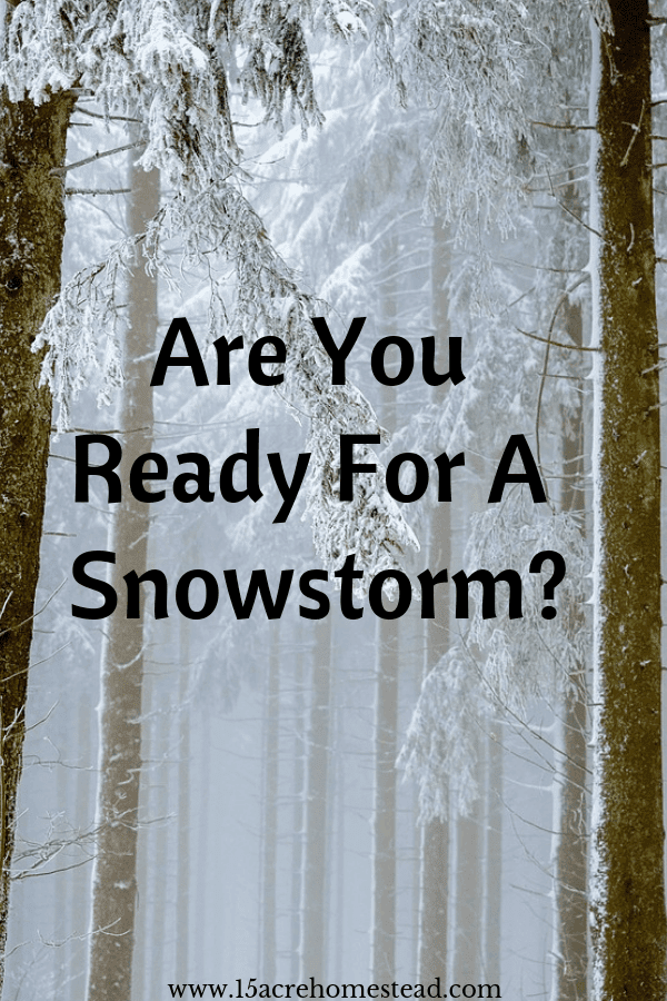 Surviving a snowstorm is easy when you take these tips to mind.