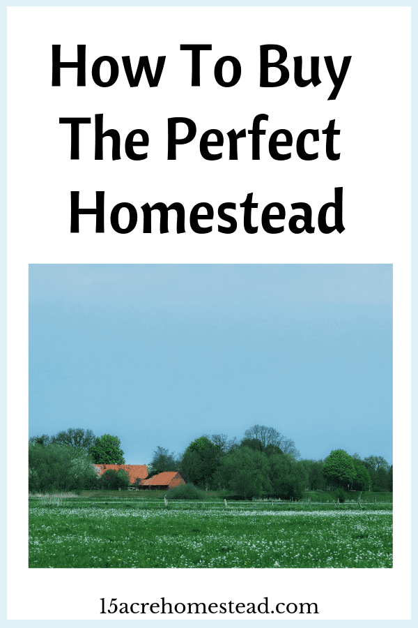 When the time comes that you feel ready to go all in and buy your perfect homestead, you need to think carefully about the decision.