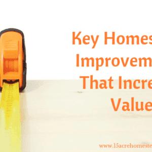 Key Homestead Improvements That Increase Value