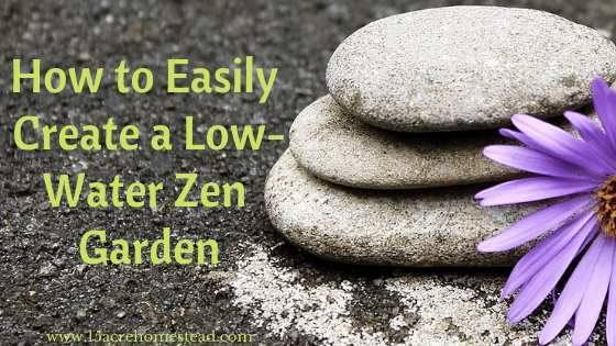 low-water Zen garden