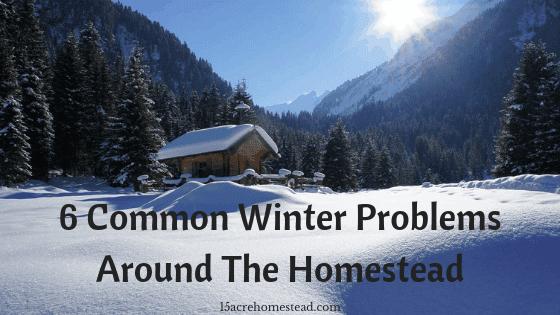 winter problems