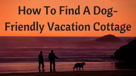 dog friendly vacation cottages