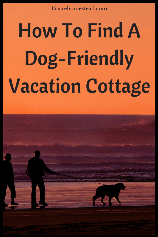 Many pet owners think they are unable to take their pets on vacation, however, their are many dog-friendly vacation cottages available.