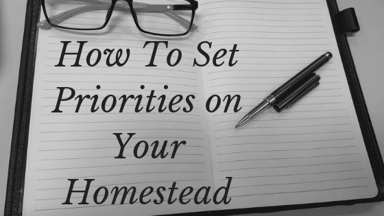 set priorities