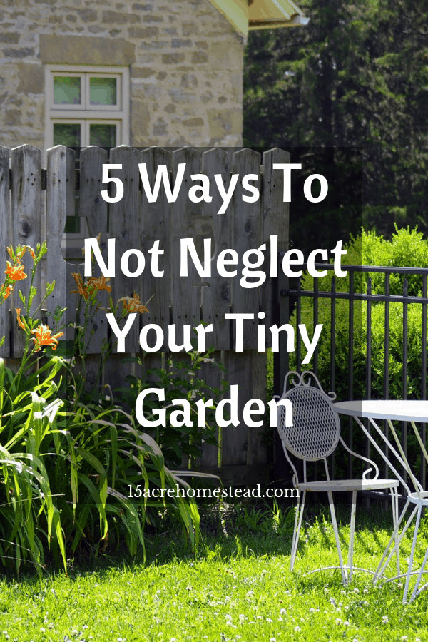 Learning 5 ways to not neglect your tiny garden can be a timesaver down the road.