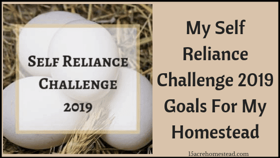 self reliance challenge 2019 goals
