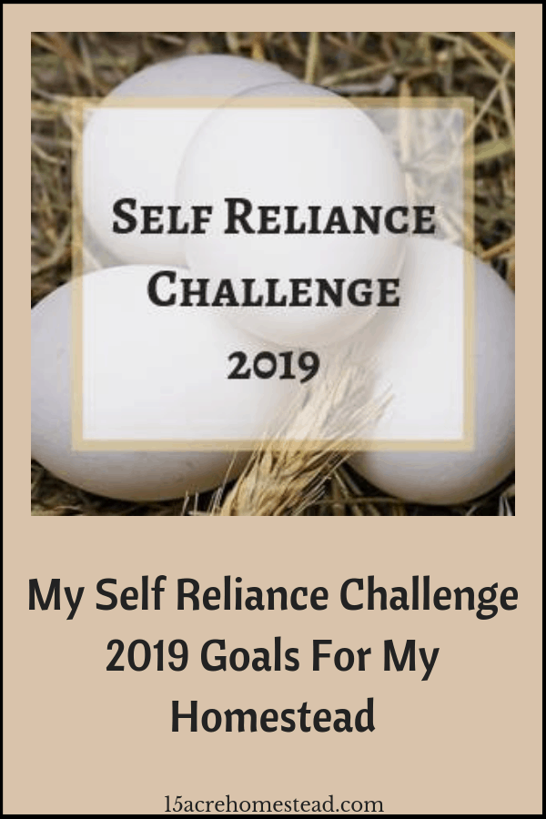 Join me on my journey once again as I set my Self Reliance Challenge goals for January of 2019. I have a very busy month planned.