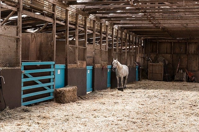 homestead barn