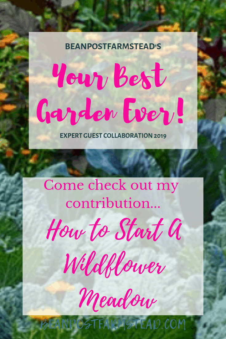 "Come check out my article ""How To Start A Wildflower Meadow"" in the gardeners collaborative"