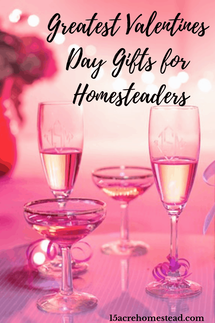 Valentines Day is a time to share gifts to show the ones we love how much we love them. Here are some great Valentines Day gifts for homesteaders.