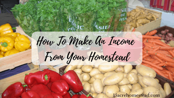 how to make an income