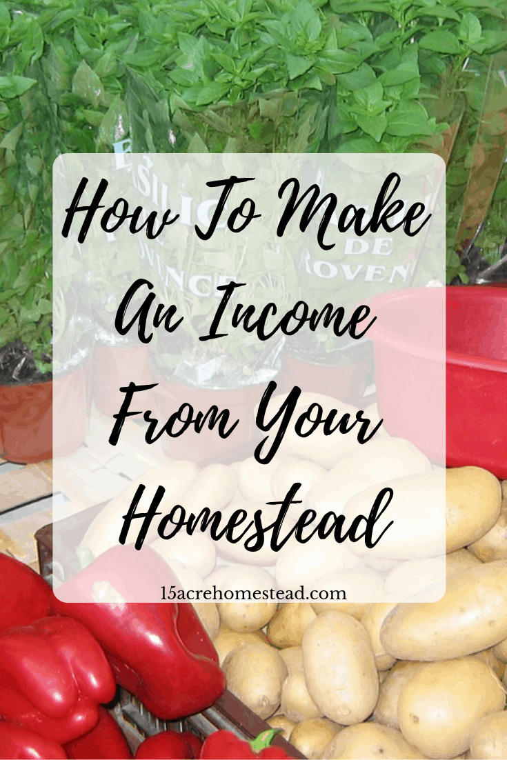 Using what you already have access to on your homestead can help you make an income! Be resourceful and start making money on your homestead by trying some of these money-making ideas right now!