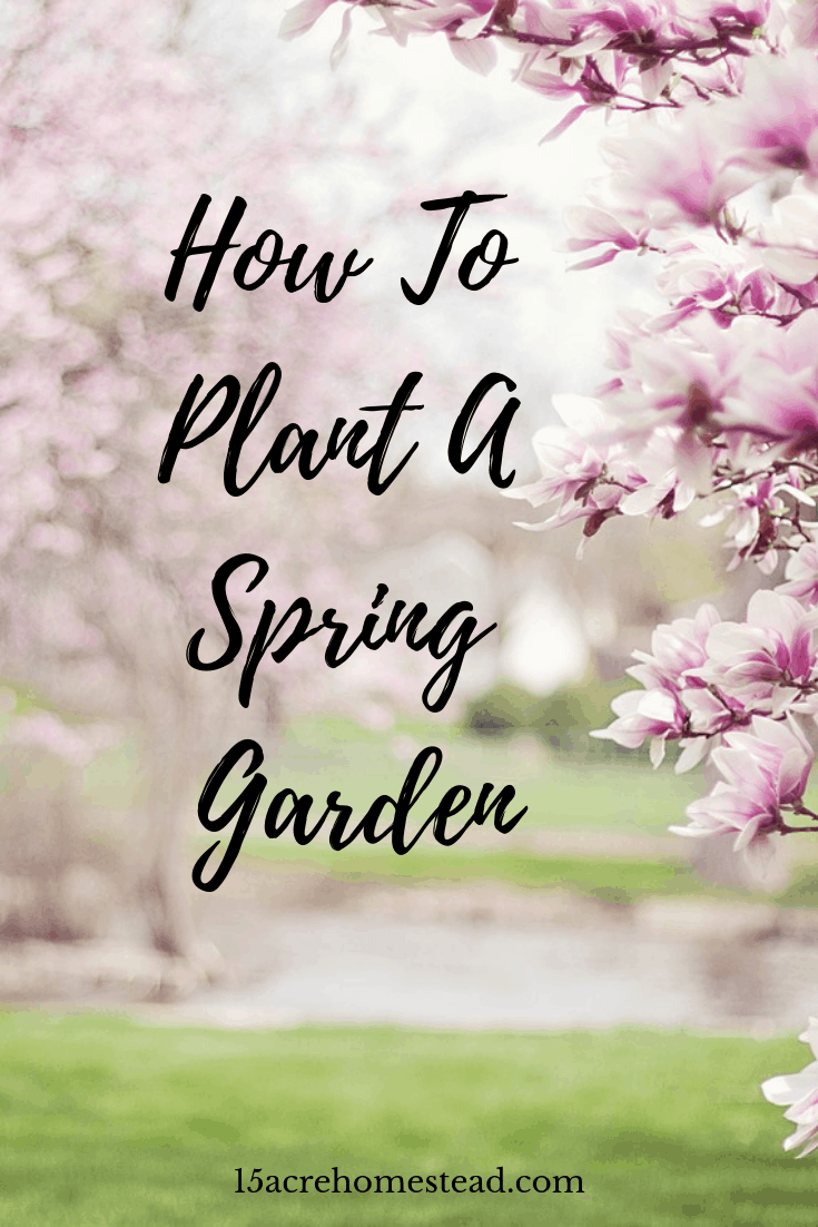 Preparation and planning are two factors when decidiing to plant a spring garden on your homestead. Learn how to do it right step by step and grab the free printable too!