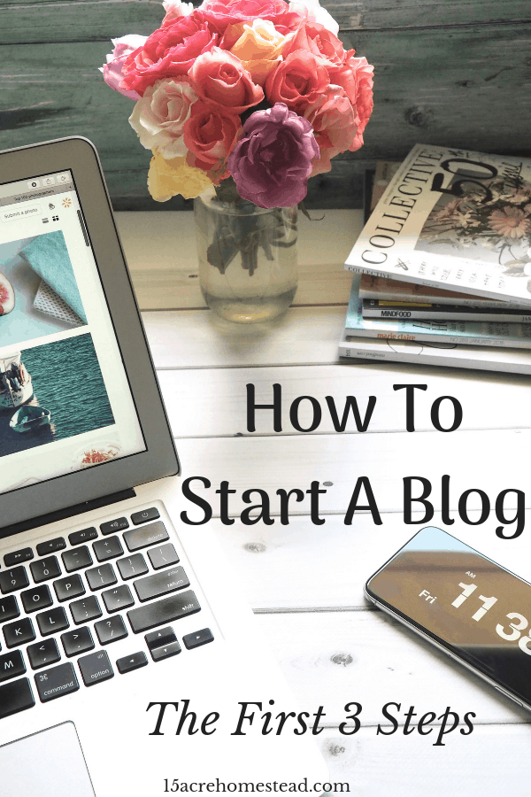 When you start a blog some people don't realize how much work is involved before you even start the writing process. Here are the first 3 syeps and the most important ones that you need to take when you make the decision to start a blog.