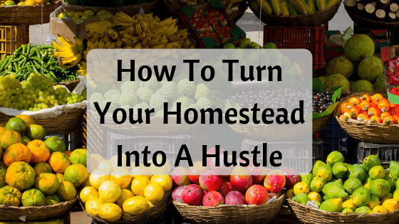 turn your homestead into a side hustle