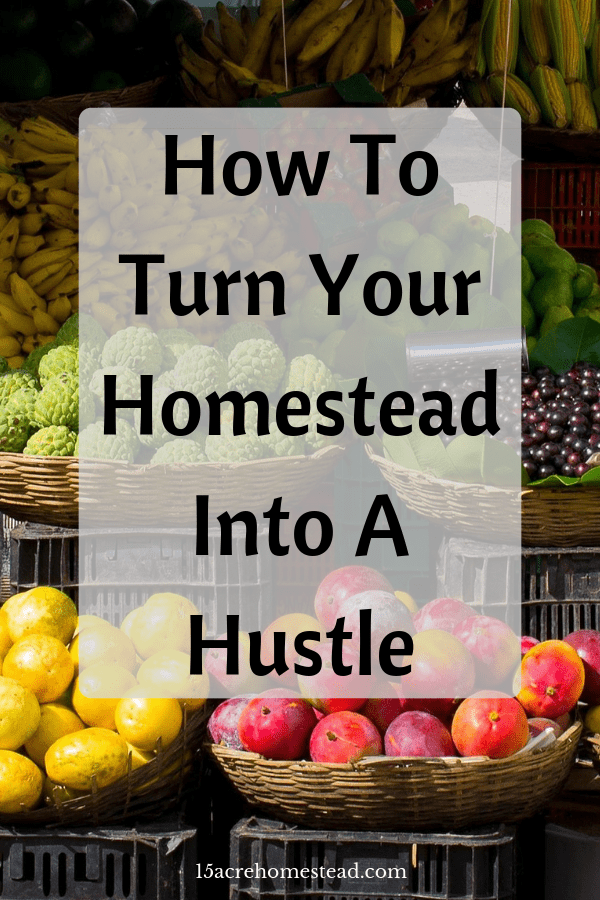 Homesteading is, for many, a journey rather than a destination. A journey that will have different goals that change and evolve as you grow in confidence and proficiency. Once you've learned to sustainably feed yourself and your family you may find that you're ready to turn your passion into a profession and turn your homestead into a hustle.