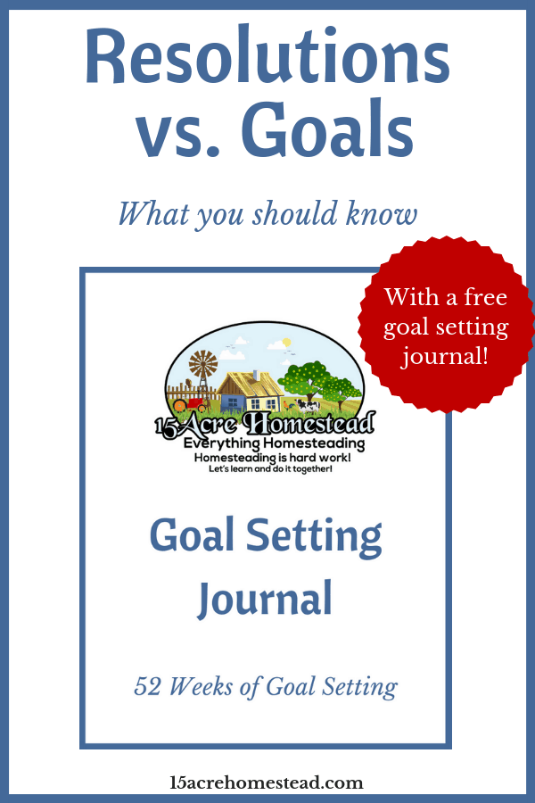 Learn the difference between resolutions vs goals and get your free Goal Setting Journal right now.