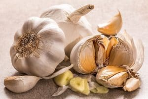 top 3 things to grow on your homestead garlic