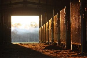 make an income with your barn